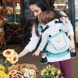 LILLEbaby-All-Seasons-ColorMe-Carrier-2-copy-500x461